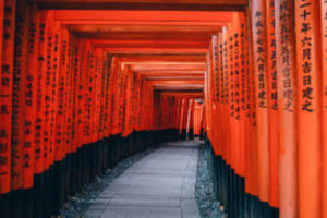外国の方も夢中になる! 古都、京都の魅力とは!?